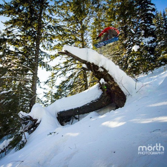 Micah boosting a tree. Photo: Reid Morth